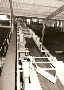 Distribution Belt Conveyor